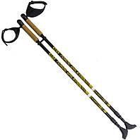 Палки для нордической ходьбы NILS NW 603