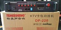 Усилитель Temeisheng dp-220