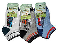 Детские носочки для мальчиков оптом, Armando , 27-30 рр., арт.АСР-N2