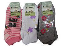 Детские носочки для девочек оптом, Armando , 35-38 рр., арт.АСР-Т2