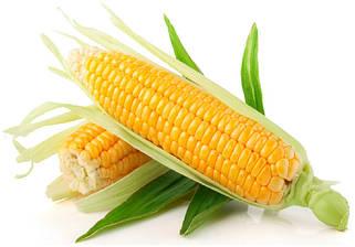 Насіння зернових