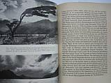 Darwin C. Ein Naturforscher reist um die Erde (б/у)., фото 6