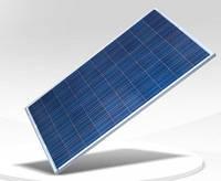 Солнечная панель ReneSola 260W Германия