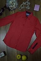 Женская рубашка коралловая в горошек Rubin