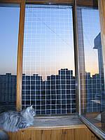 Антикошка - защитная сетка на окно.