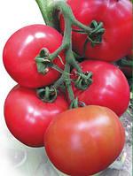 Семена розового томата Касамори F1 100 шт Kitano Seeds /Китано Сидс
