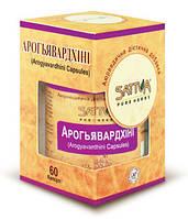 АРОГЬЯВАРДХИНИ (60 кап.) заболевания печени и желчевыводящих путей
