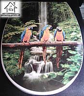 Крышка для унитаза Elif Plastik (Папугаи)