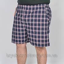 Шорти чоловічі у великих розмірах, фото 2
