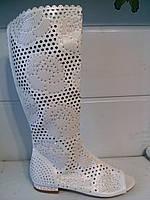 Сапоги женские перфорация 35, 36 размеры Экокожа