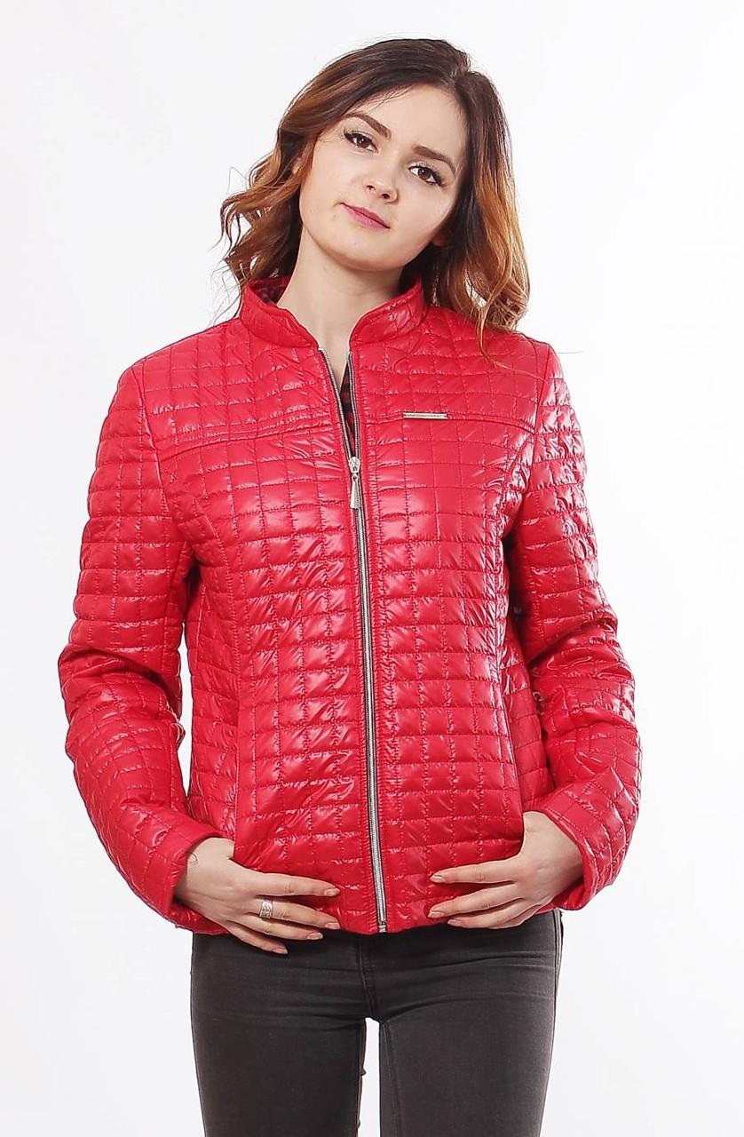 Демисезонная куртка Саша 1-К      14 цветов