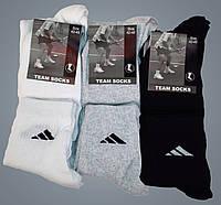 Носки мужские спортивные средней высоты. Хлопок. Р-р 42-45. Черный, серый, белый.