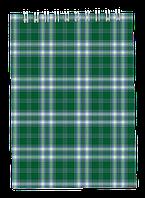 Блокнот на пружині зверху , А-5, 48 арк, клітинка, картонна обкладинка,зеленийBM.2470-04