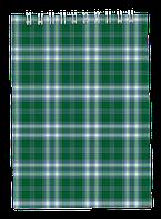 Блокнот на пружине сверху SHOTLANDKA, А6, 48 листов, клетка зелений BM.2480-04