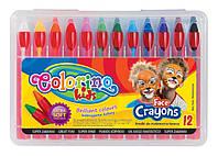Карандаши  для лица в пластиковой упаковке, 12 цветов 32650PTR
