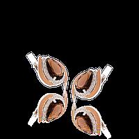Серебряные серьги ОРХИДЕЯ 925 пробы с НАКЛАДКАМИ золота 375 пробы , фото 1