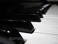 Налаштування піаніно Луцьк. Настройка пианино