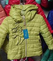 Куртка девочка весна-осень Бантик, 92-110р.