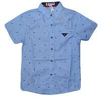 Рубашка  с коротким рукавом  для мальчиков, F&D размер 10, арт. YY-2987