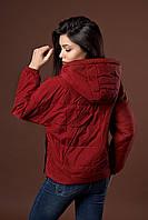 Женская молодежная демисезонная куртка. Код модели К-97-38-17. Цвет марсала.