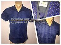 Мужская рубашка бренд CALVIN KLEIN