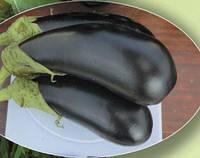 Семена баклажана Каролина F1 1000сем. Agri Saaten