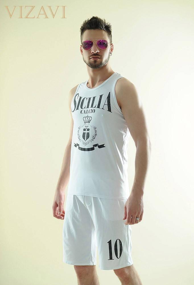 Мужской спортивный костюм арт 48048-223