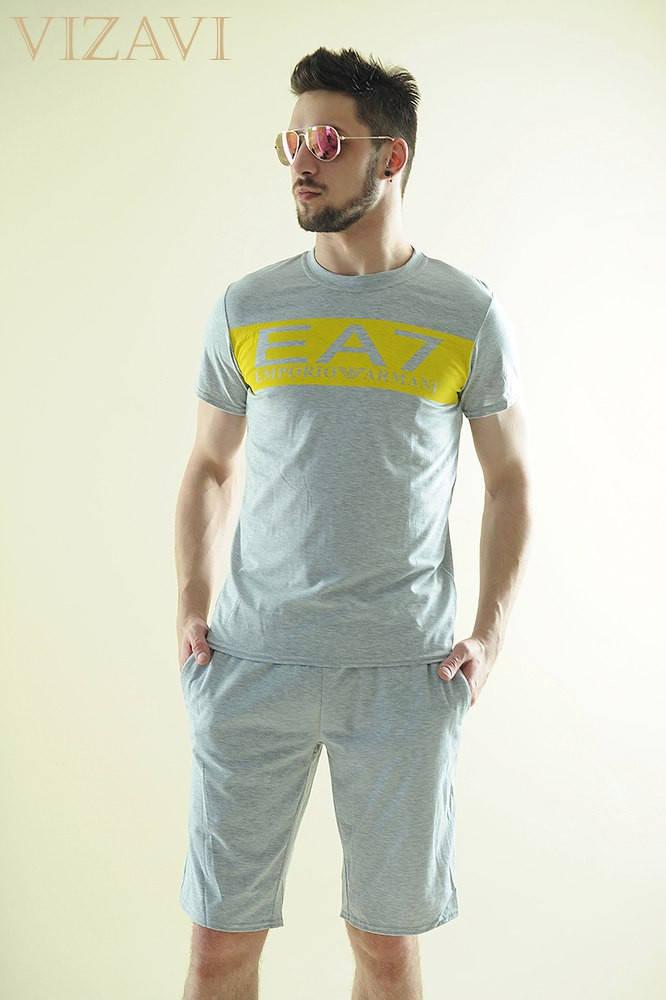 Мужской спортивный костюм арт 48053-223