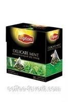 Чай травяной Lipton Delicate Mint  в пирамидках 20*1,1 гр