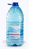 Вода минеральная МОРШИНСКАЯ пэт 6 л. н/газ