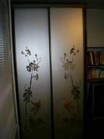 Двери с зеркалом и рисунком на шкаф купе профиль бронза