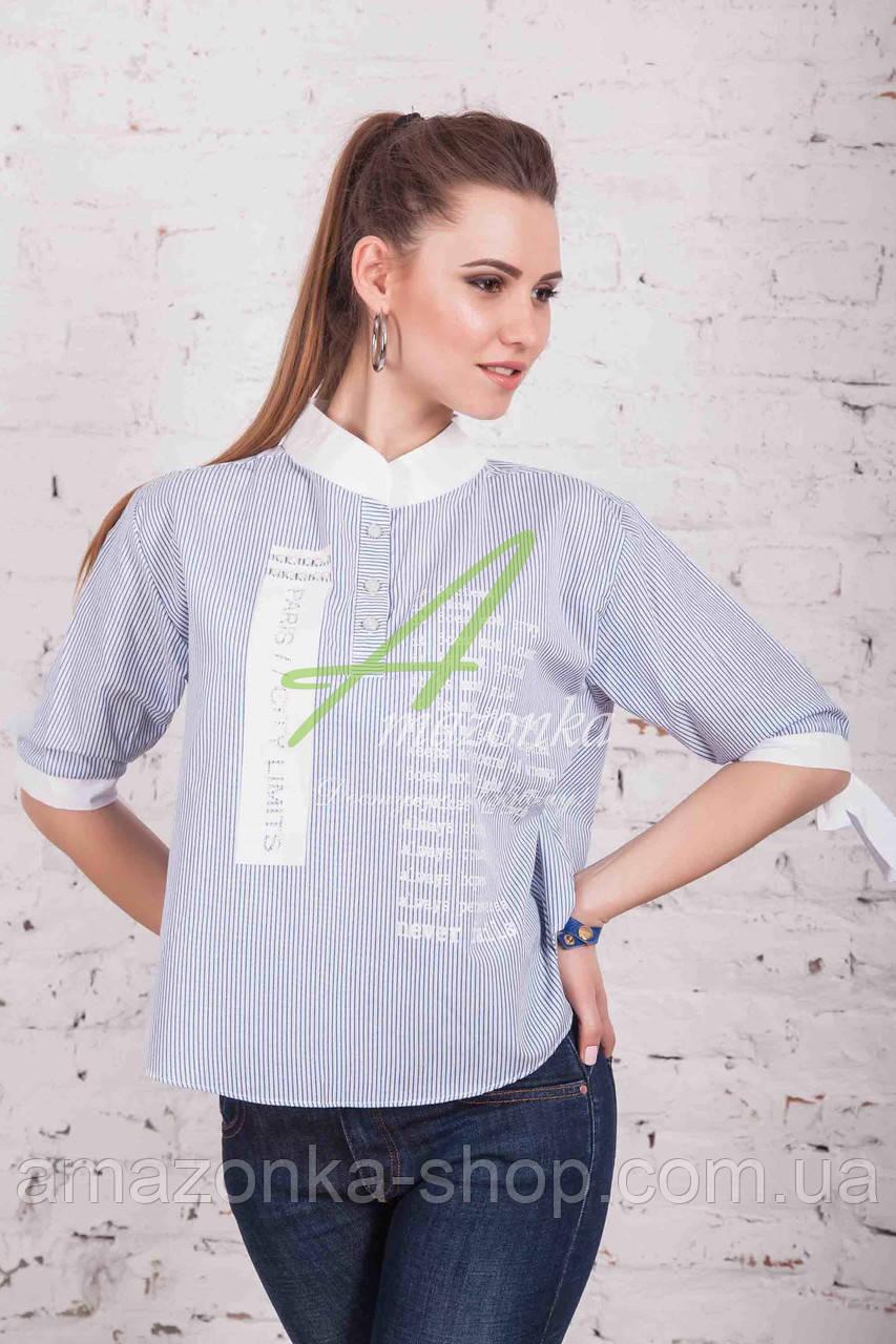 Весенняя блузка от производителя в больших размерах 2017 - (код бл-102)
