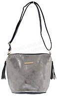 Стильная оригинальная наплечная женская сумка с серебряной лицевой частью art. C-018 синяя