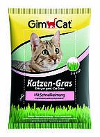 Трава Gimcat Katzen-Gras для кошек, 100 г