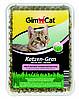 Трава Gimcat Katzen-Gras для кошек, 150 г