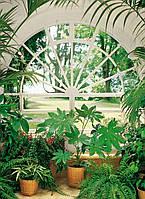 Фотообои  Зимний сад размер 254 х 183 см