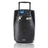 Колонка комбоусилитель с аккумулятором Temeisheng SL10-02, 60W, Bluetooth, 2 микрофона