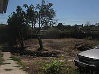Дом с свободным участком земли 10 соток.