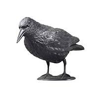 Ворон для отпугивания птиц: пластик, размер 11 х 20 х 35 см