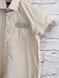 Рубашка с коротким рукавом,клетка для мальчиков 5-16 лет, фото 5