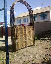 Плетень тын в Киеве