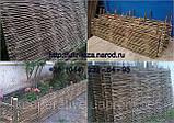 Плетень тын лоза Заборы, изгороди, ограждения в Украине, фото 2