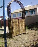 Плетень тын лоза Заборы, изгороди, ограждения в Украине, фото 3