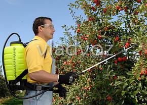 Опрыскиватель садовый ручной распылитель сад ранцевый Marolex на 20 литров TITAN, фото 2