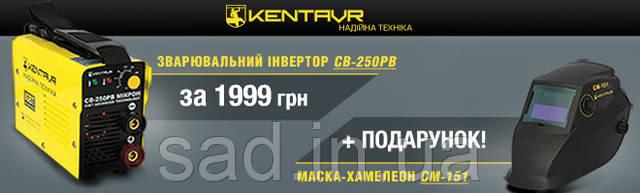 "Сварочный  аппарат ""Кентавр СВ-250РВ микрон"" + Маска сварщика хамелеон ""Кентавр СМ-151"", цена комплекта 1999 грн"
