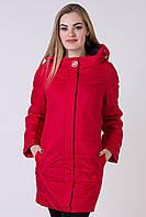 Женская куртка большого размера POEM №7761