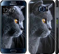 """Чехол на Samsung Galaxy S6 G920 Красивый кот """"3038c-80"""""""