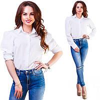 Женская блузка на пуговицах с рукавом длинным на манжете