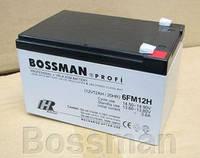 Свинцово-кислотный аккумулятор 6FM12H Bossman Profi (12V 12AH)