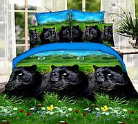 Полуторный набор постельного белья 150*220 Полиэстер №019